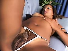 CHOCOLATE COCK IN LATINA